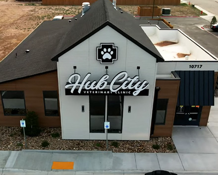 Hub City Vet Contacts Germinator to Get the Best Lubbock Sanitizing Service
